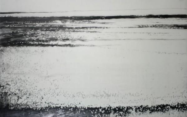 05.02.15.13.06.30 potloodtekeningen op mylar / pencil drawing om mylar, 91,5x 52cm, 2015