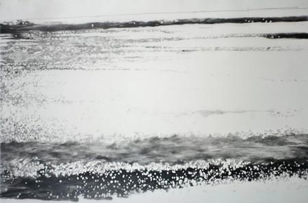 05.02.15.13.07.30 potloodtekeningen op mylar / pencil drawing om mylar, 91,5x 52cm, 2015