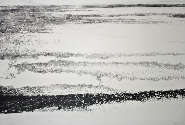 05.02.15.13.08.30 potloodtekeningen op mylar / pencil drawing om mylar, 91,5x 52cm, 2015