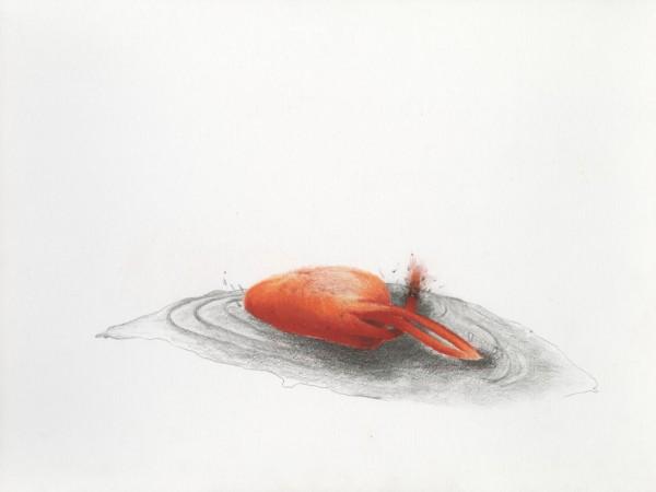 Gevallen Pencil drawing on paper, 40x30cm, 2013