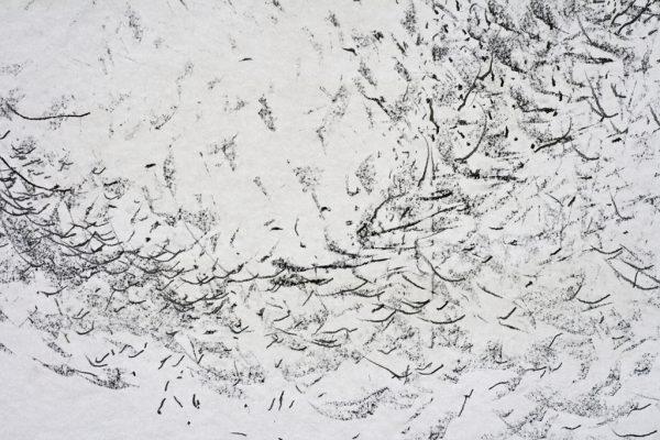 Zwerm ritme, graphite on paper, 150 x110 cm, 2017