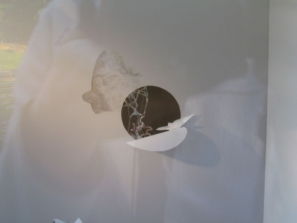 Quest of Oxytocine Installation with graphite drawings, golden leaf, maps and a scale in Museum van Alle Tijden, 2014