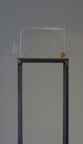 Our breath Installation of golden leaf, metal and plastic, 24x42x180 cm, 2013