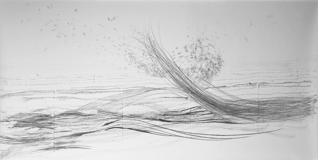 Performance echo II, graphite drawing on paper, 300 x 150 cm, 2017