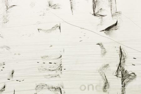 Detail, Graphite pencil on calqueer paper, 2 x 60 x ± 220 cm, exhibition in Zone2Source, het Glazen Huis, Amstelpark, Amsterdam, 2017, photo by Harold van de Kamp